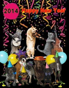 Pet Happy New Year