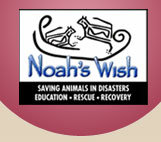 noahs wish logo