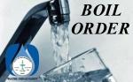 Nelso Boil Order